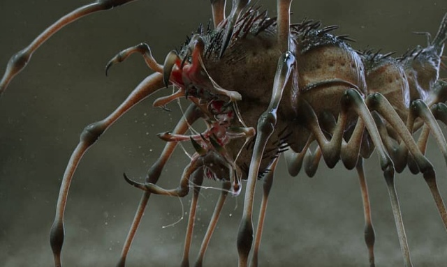 The Preda-Pede: Unused Predator (2018) Creature Concept