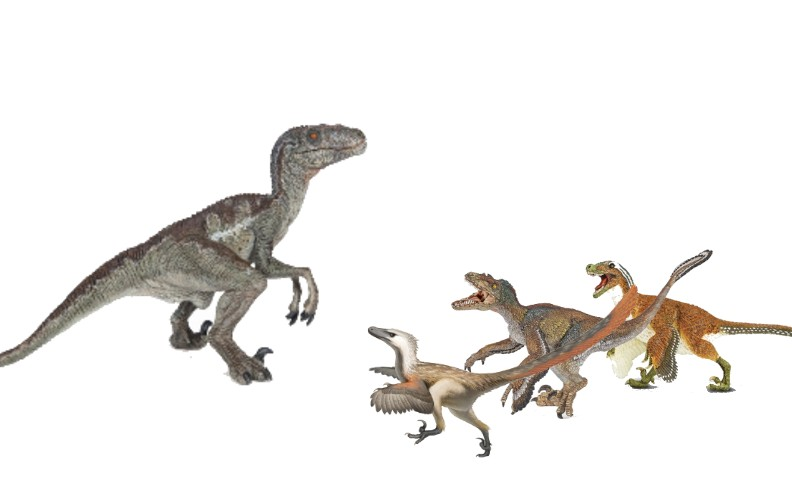 Would a movie Velociraptor win or lose against 3 real raptors? (a