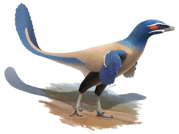 Dinosaur, which looked like a giant bird, discovered in Canada!